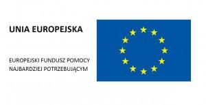 logo z flaga jpg